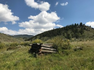 mcintyre gulch/alder creek intersection cabin