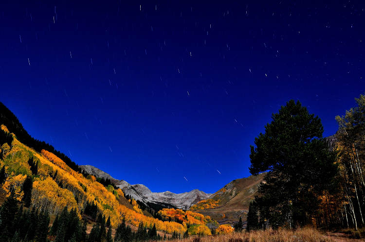 yellow aspens on the mountains in West Brush Creek, Crested Butte, CO