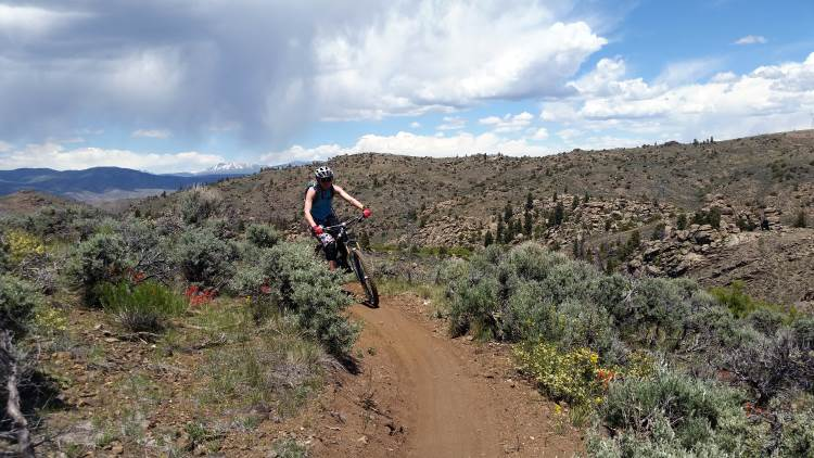 riding singletrack on the Aberdeen loop