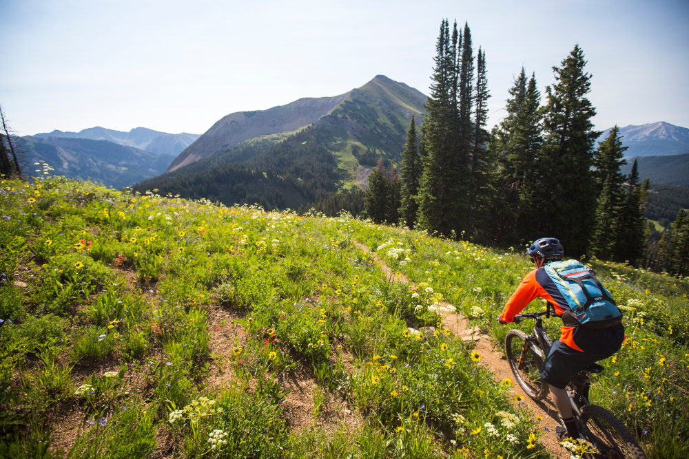 trail 403 in crested butte