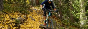hicks downhill needles mountain bike