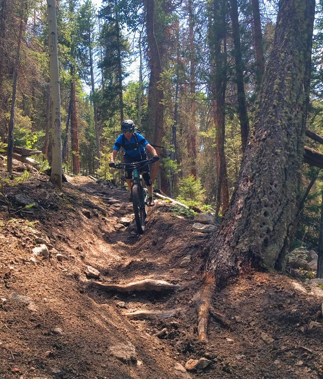 downhill on barrett creek mountain bike