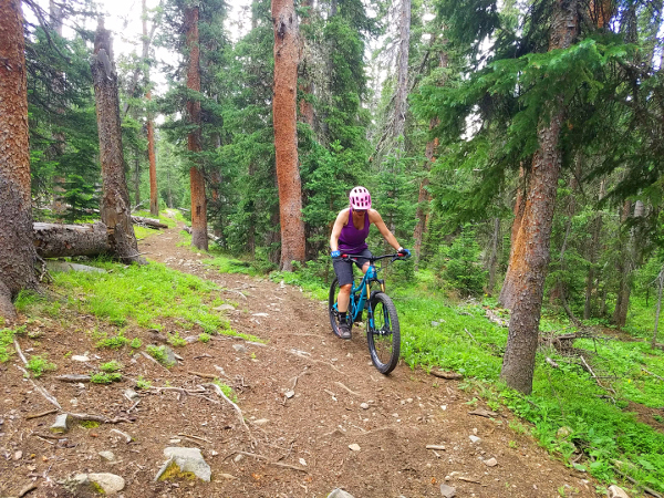 mountain biking fairview trail fossil ridge gunnison national forest