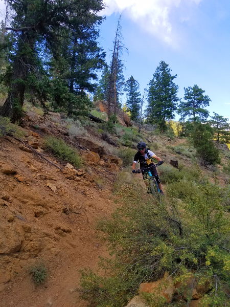 mountain biking doctor park trail crested butte